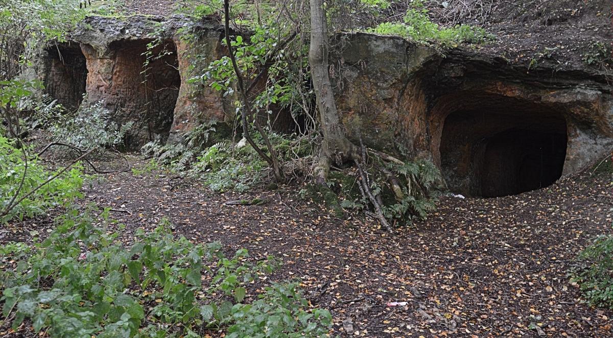 Marehill Quarry