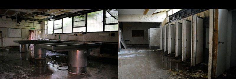 Abandoned Derelict Derp