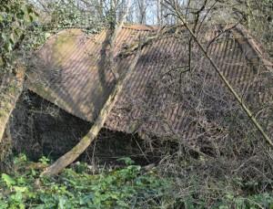Tumbled Down Barn Derelict Farm Selmeston