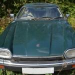 Big Cat Jaguar Motor Car Scrapyard