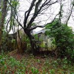 Abandoned Derelict Bungalow : Haywards Heath